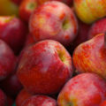 Researchers have found a way to detect and monitor temperature changes in refrigerated fruit, such as Braeburn apples (pictured above)